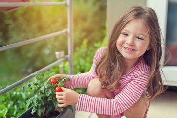 Własne zioła i warzywa na balkonie